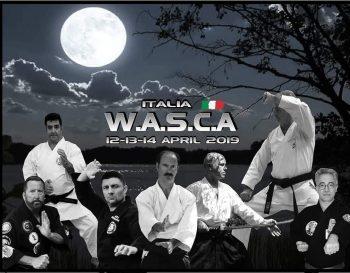 WASCA Martial Arts Camp